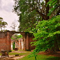 Old Sheldon Church Ruins 3 by Lisa Wooten