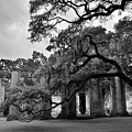 Old Sheldon Church Ruins Black And White 3 by Lisa Wooten