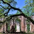 Old Sheldon Church Ruins I by Harriet Feagin
