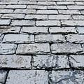 Old Slate Tiles by Tom Gowanlock