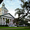 Old State Capitol by Wayne Denmark