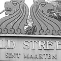 Old Street Sint Maarten In Sepia by Margaret Bobb