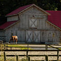 Old-style Horse Barn by Jordan Blackstone