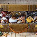 Old Suitcase Full Of Sea Shells by Garry Gay