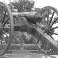 Old Time Cannon by Michelle Powell