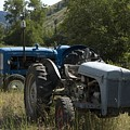 Old Tractor 7 by Sara Stevenson