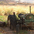 Old Tractor by Francisco Ayala