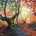 Old Tree by Vlad Duchev