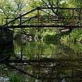 Old Trestle Bridge by Larry Ricker