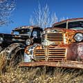 Old Trucks by Scott Read