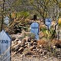 Old Tucson Graveyard by Kathryn Meyer