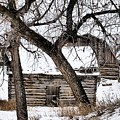 Old Ulm Barn by Susan Kinney