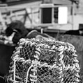 Old Vintage Hand Made Rope Lobster Pot Used In Fishing Industry by Matthew Gibson