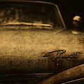 Old Vintage Plymouth Car Hood by Design Turnpike