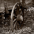 Old Wagon Wheel by Christopher Holmes
