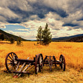 Old Wagons In Meadow by Mountain Dreams