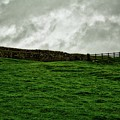 Old Wall, New Gate by John Kenealy