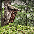 Old Weathered Worn Bird House In Summer by Robert Anastasi