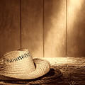 Old West Farmer Hat by American West Legend By Olivier Le Queinec