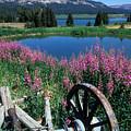 Old Wheel And Brooks Lake by Kathy Yates
