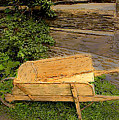 Old Wheelbarrow Brushed by Ian  MacDonald