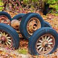 Old Wheels -  by Louis Dallara