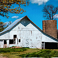 Old White Barn With Treed Silo by Anna Louise