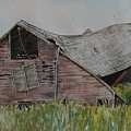 Old Wisconsin Barn by Patricia Ricci