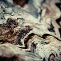 Old Wood Abstract Vintage Background Texture  by Raimond Klavins