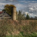 0034 - Old Wooden Barn And Silo by Sheryl Sutter