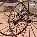 Old Worn Wagon Wheels In New Mexico by Colleen Cornelius