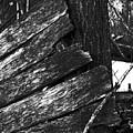 Olddoornextdoor16-18 by Curtis J Neeley Jr