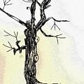 Oldest Tree by Hae Kim