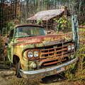 Oldie But Goodie 1959 Dodge Pickup Truck by Debra and Dave Vanderlaan