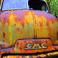 Ole Rusty Full Frontal by Dana  Oliver