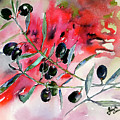 Olive Branch Watercolor by Ginette Callaway