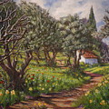 Olive Grove In Spring-time by Yvonne Ayoub