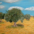 Olive Trees In Summer by Jose Luis Villagran Ortiz