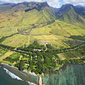 Olowalu Aerial by Ron Dahlquist - Printscapes