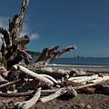 Olympic Peninsula Coast by Avril Christophe