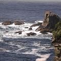 Olympic Peninsula Coastline by NaturesPix