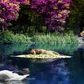 On A Lake by Svetlana Sewell