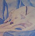 On Fallen Blankets by Jenny Armitage