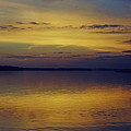 On Golden Pond by Phill Doherty