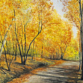 On Golden Road by Mary Tuomi