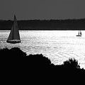On The Bay by Mark Wiley