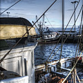 On The Docks In Provincetown by Tammy Wetzel