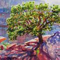 Living On The Edge by Steve Henderson