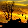 On The Farm At Sunset by Donald C Morgan