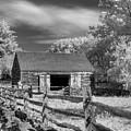 On The Farm by Joann Vitali
